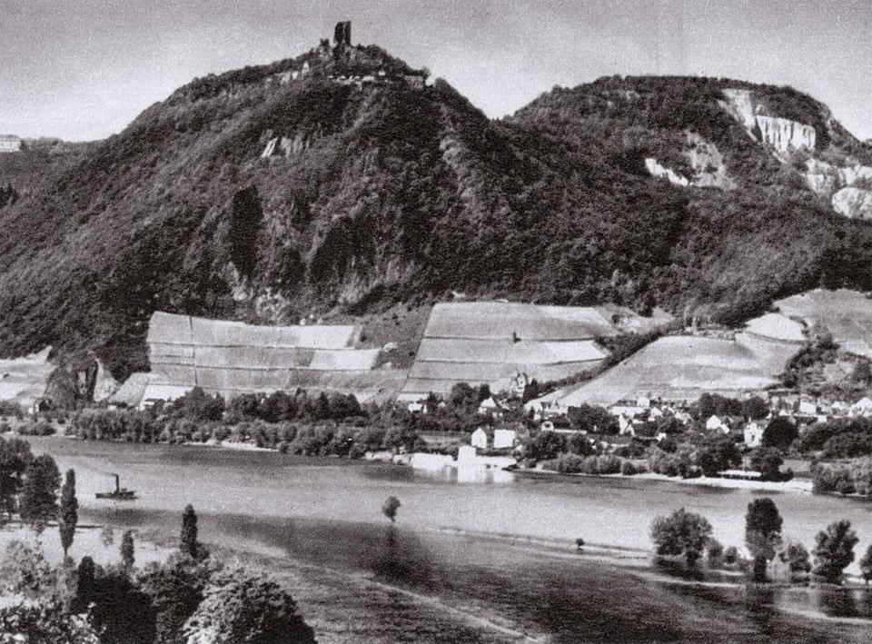 Weinbergslage Rhöndorfer Drachenfels - historische Aufnahme