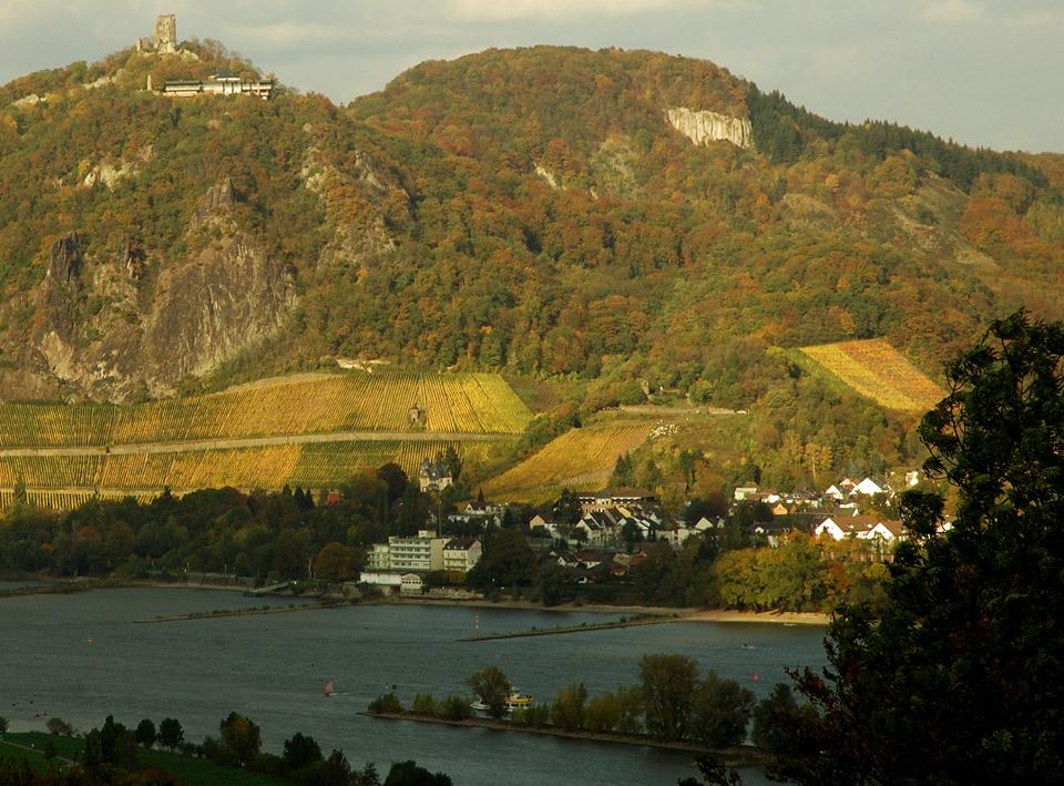 Weinbergslage Rhöndorfer Drachenfels